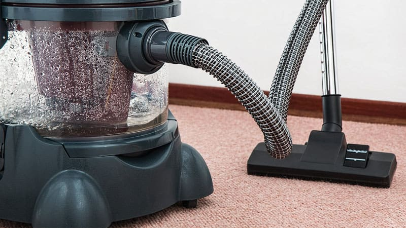 How to Get Rid of White Worms in Carpet?